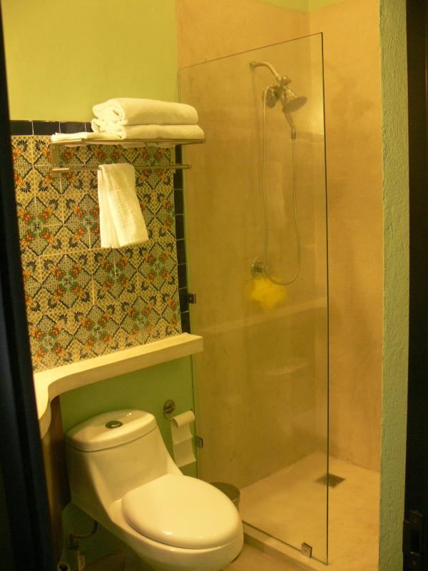 Glass walk in shower with good water pressure and water softener