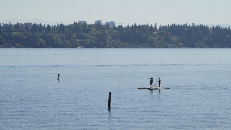 Paddle boarders in front of Madison Beach