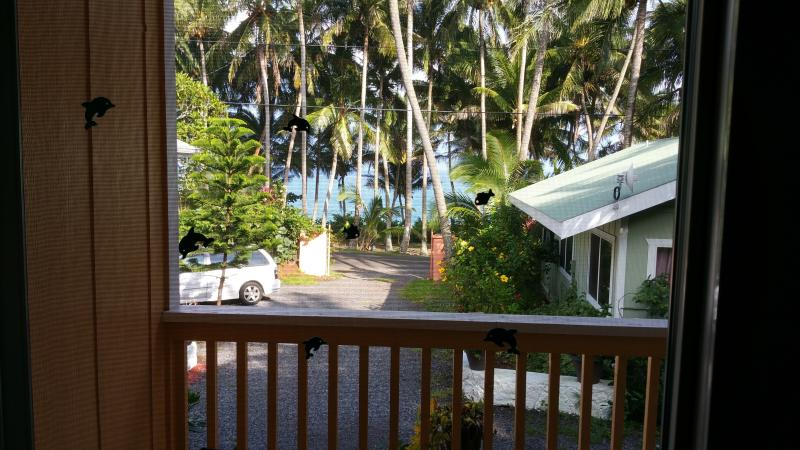 View from Oceanfront Cottage across from Kehena Beach and Pohoiki Family Beach 7 miles away.