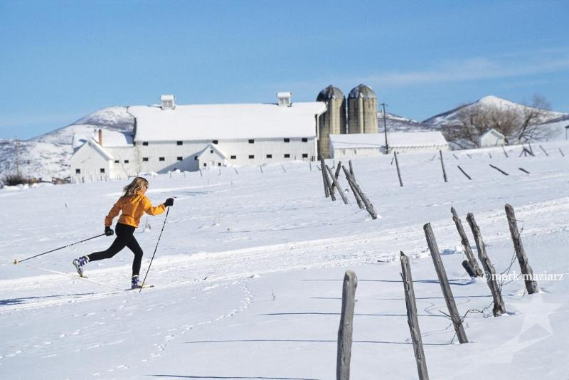 Classic nordic cross country skiing at the Farm.