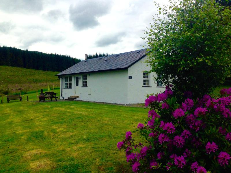 Pine Cottage nestled in Dochart Forest, near picturesque Killin