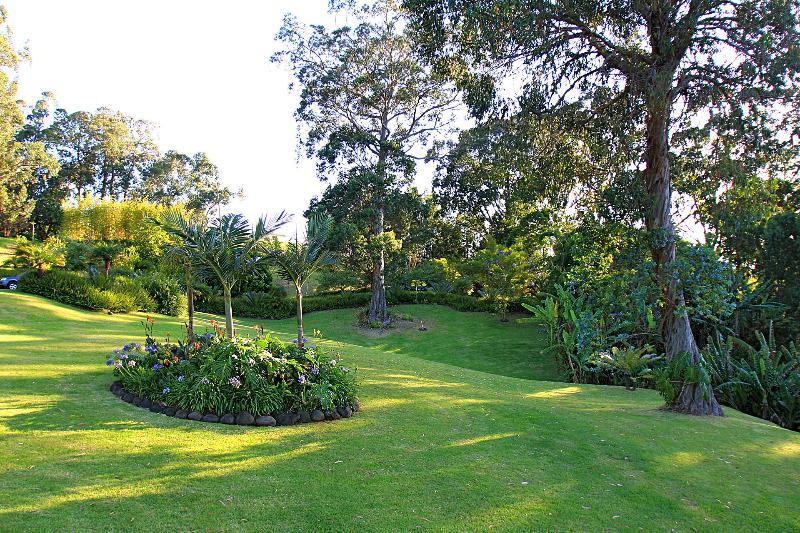 Balanceo de céspedes, fragante follaje hawaiano y los majestuosos bosques de eucalipto.