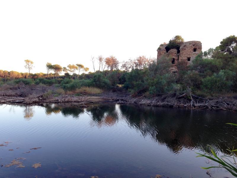 Lake Tower brick and Brick Tower