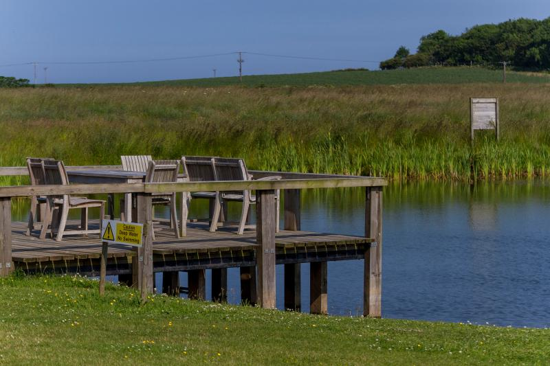 Jetty onto the Lake - In Wildflower Meadow