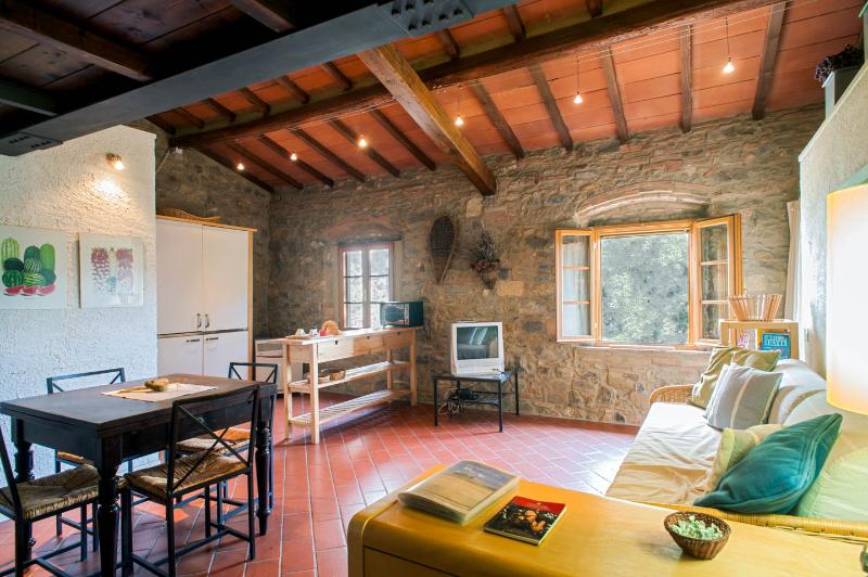 Leccino one-room flat | pool, vacation rental in Capannoli