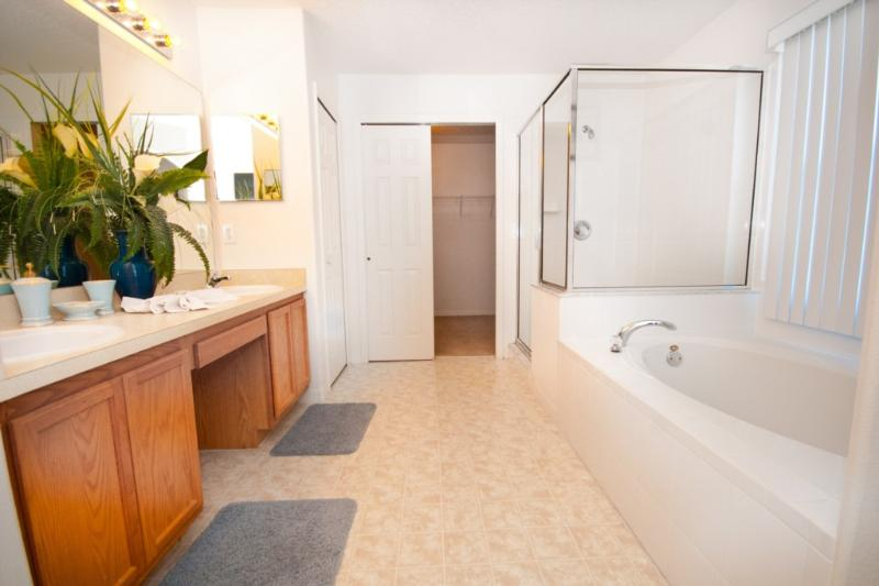 Another bathroom, this one with walk in shower and large bath tub.