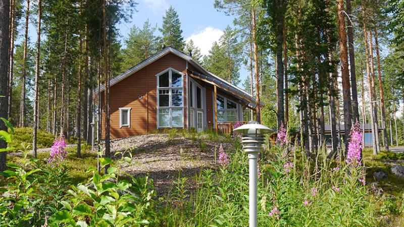 KolinPilvi / SuomenSatu Koli, holiday rental in North Karelia