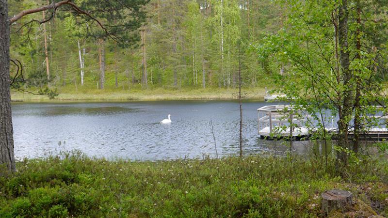 Private oever van het meer