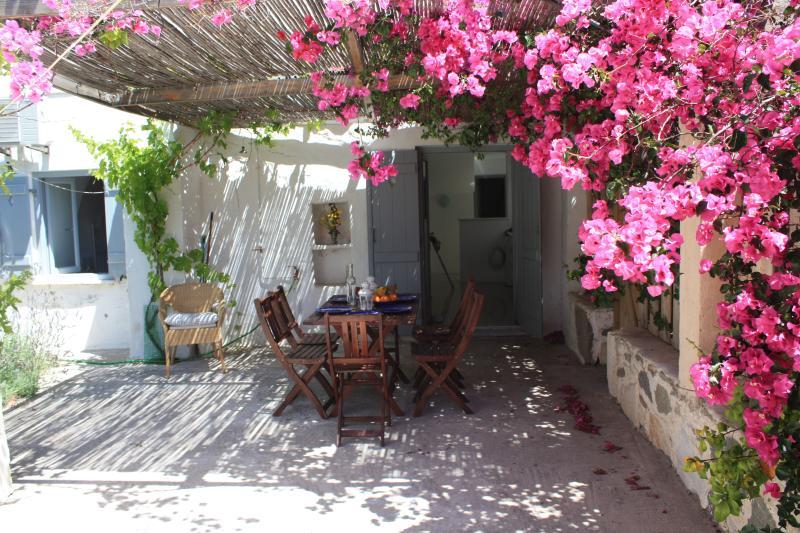 Jardín y vistas a la terraza con vistas a la cocina.