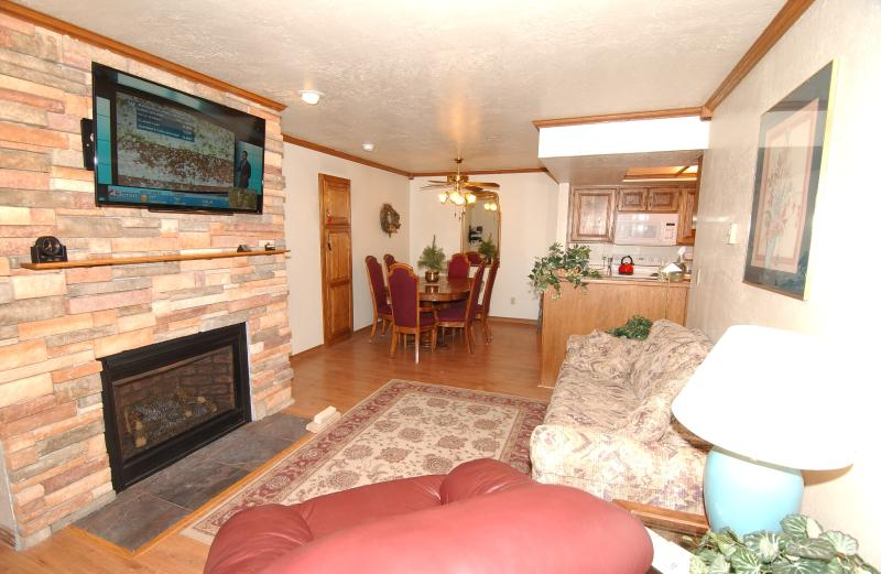 Salon avec gaz naturel cheminée & 48' LCD TV w / lecteur de DVD & TV du câble (& Reine Sleeper Sofa)