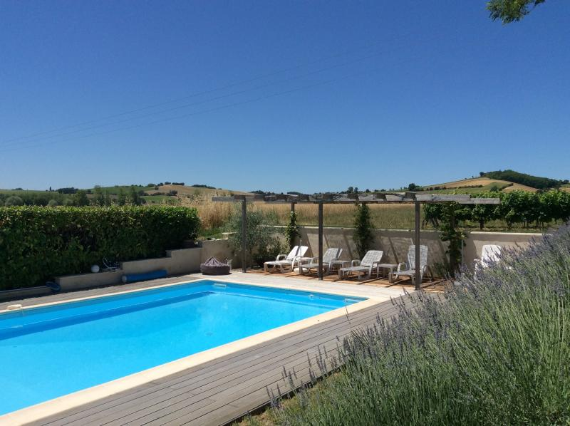 Pool side view surrounded by vines in area known as Little Tuscany