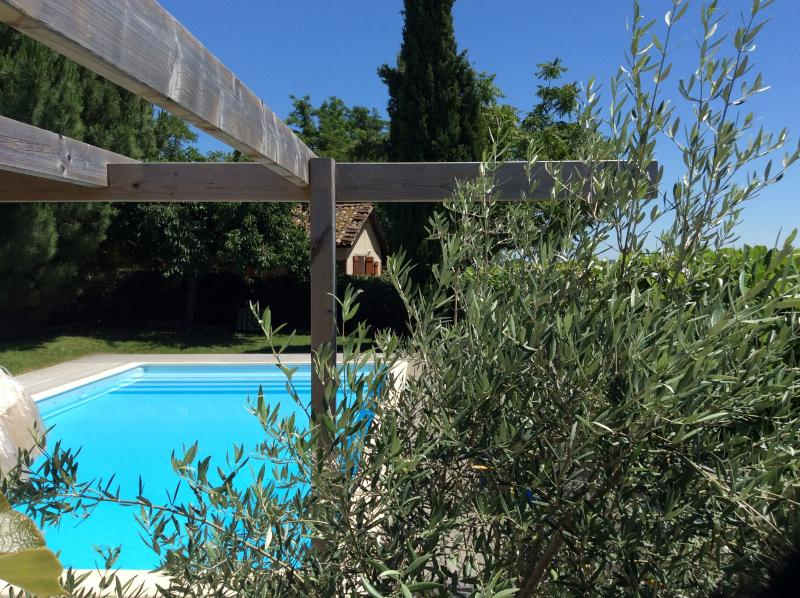 Pool 10m x 5m with sun all day and beautiful views of vines, sunflowers and hills
