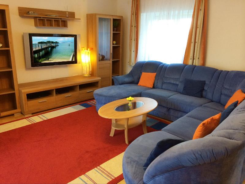 Linz Apartment Comfort-Size 120 m2, holiday rental in Schwertberg