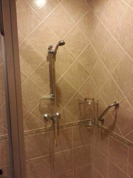 Hot and cold water shower, with place to put shower cream and shampoo and security handle