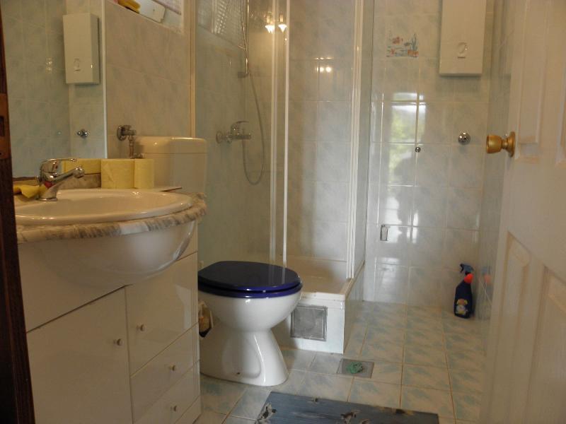 A1 Plavi (2 + 2): baño con inodoro