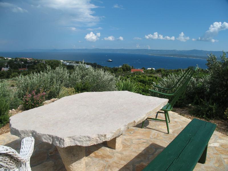 vue sur la mer (maison et environs)