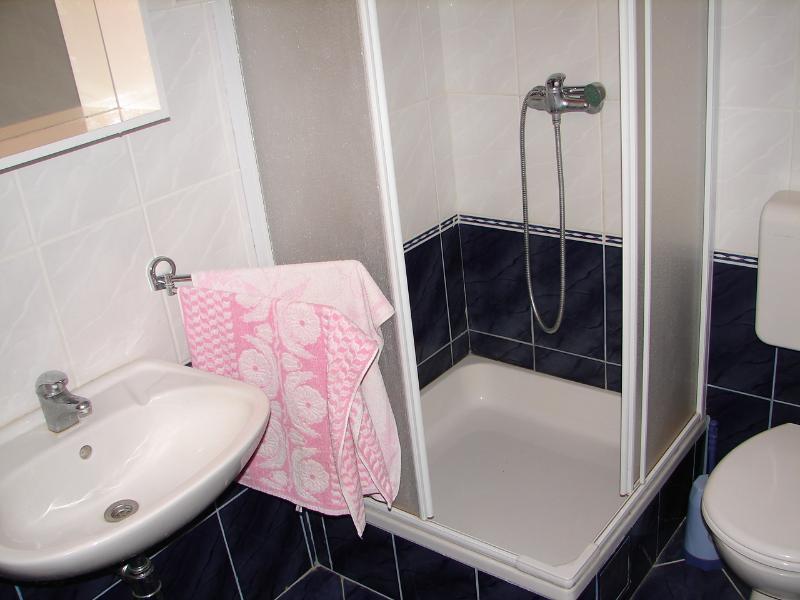 A1-donji (4 + 1): banheiro com vaso sanitário