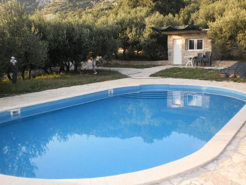 swimming pool (house and surroundings)