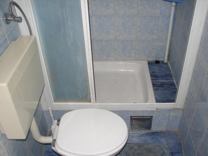 A2-Manji(3+1): bathroom with toilet