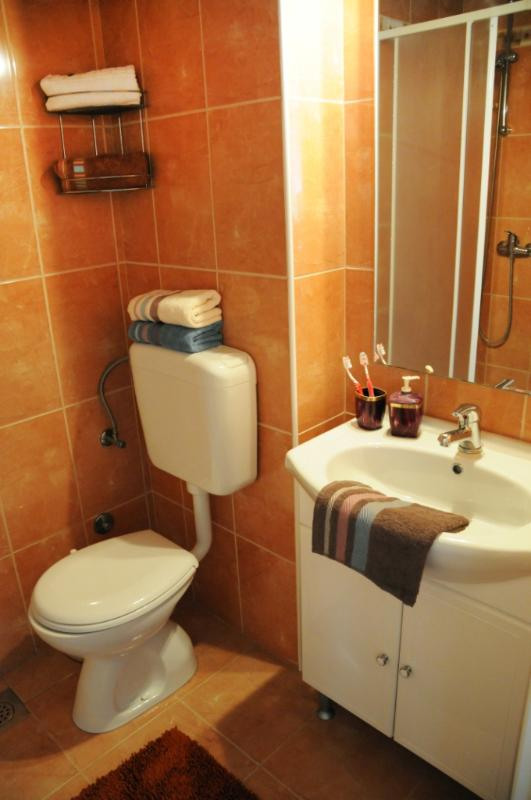 A3(4+3): bathroom with toilet