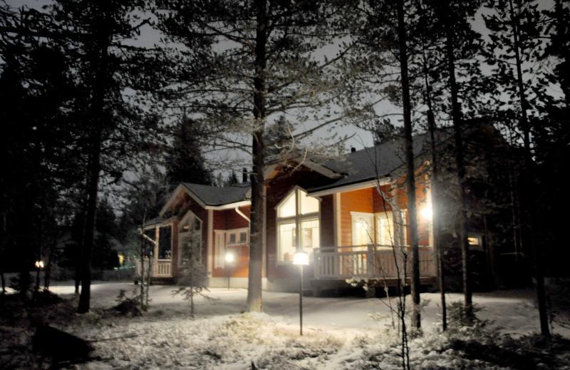 LevinSatu: SeLevi luces de invierno