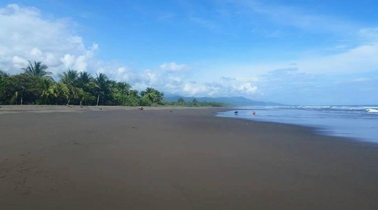 Dominical Beach