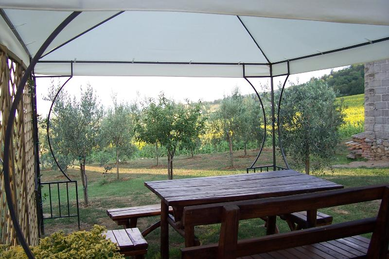 The gazebo, equipped with lamp and socket. You can use the laptop and wi-fi