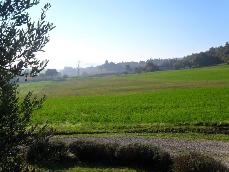 View from olive grove of Cà del Mouth