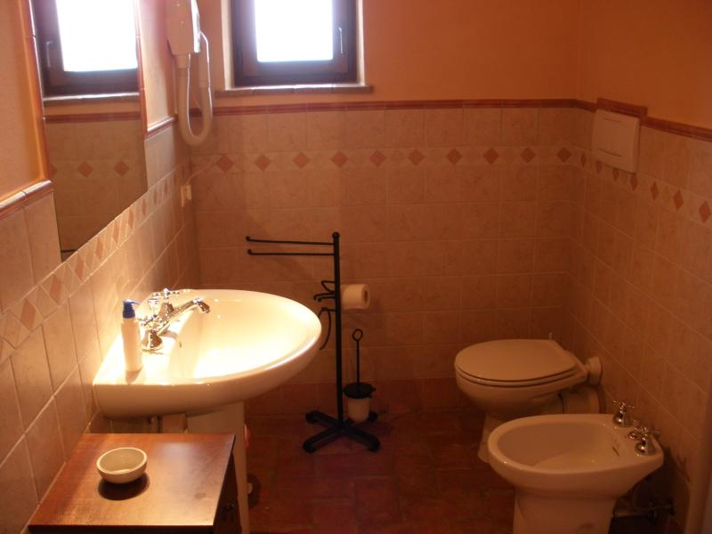 The bathroom with shower and hairdryer