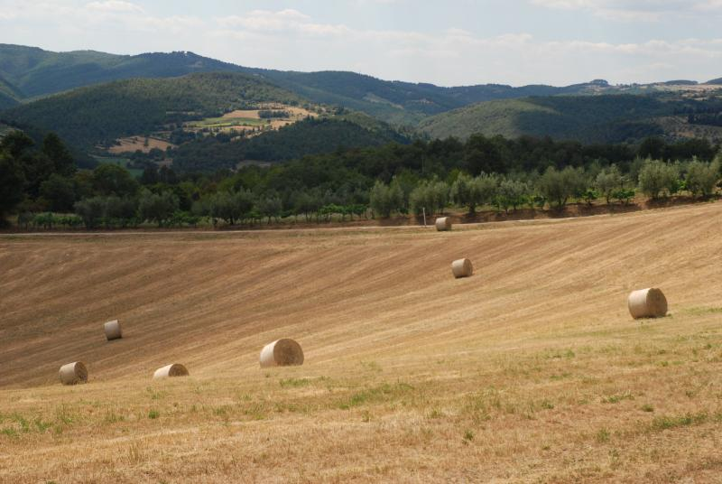 Hay rolls of via del Carmine