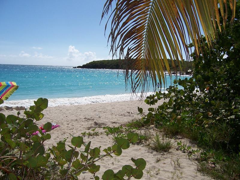 Playa Pata Prieta (Secret Beach)