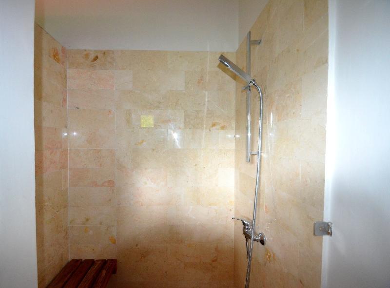 standard room - shower