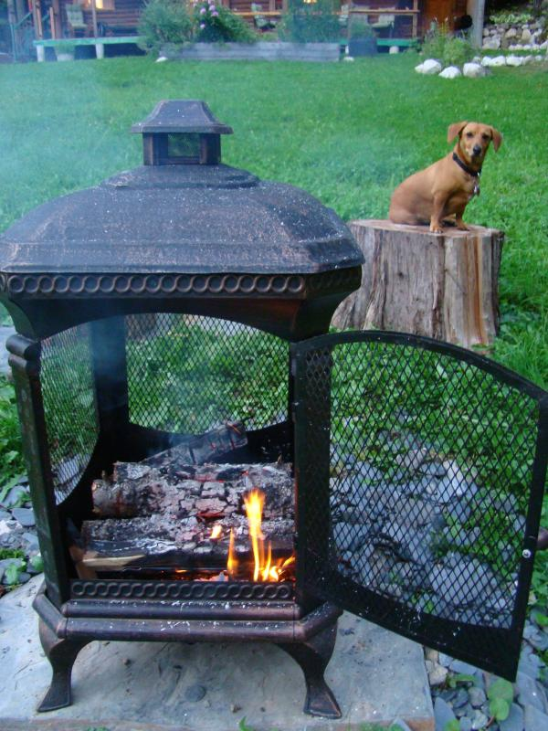 Enjoy marshmallow-roasting at the outdoor fireplace