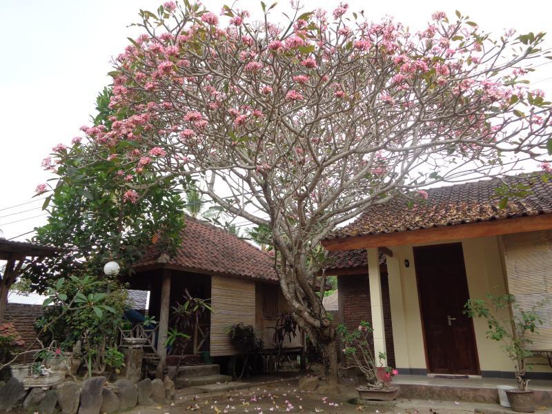 Batulayar Bungalow 2, vacation rental in Senggigi