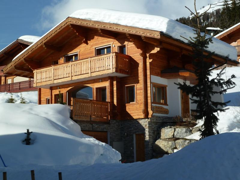 Chalet Campanule in de winter