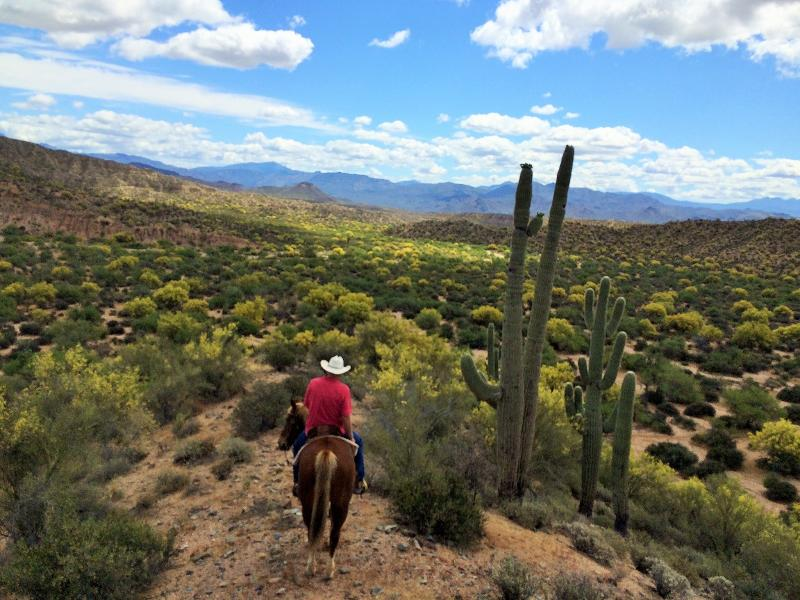 lots of trails for horses, bikes or hikers