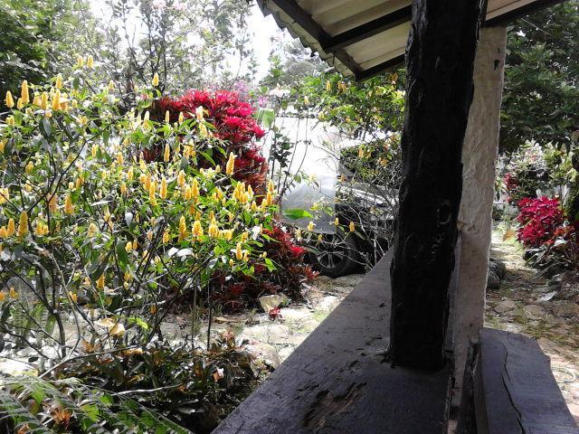 La Corraleja, holiday rental in Tocaima