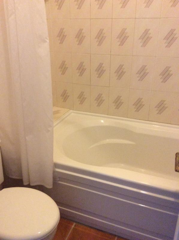 Bathroom with shower & tub in typical standard room