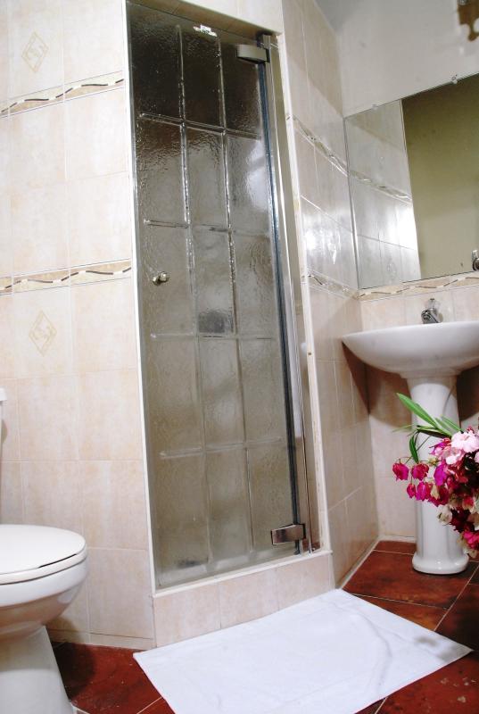 Shower in 2nd bathroom in Deluxe 1-bedroom suite