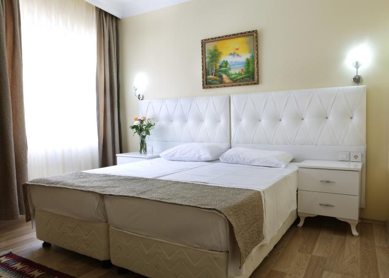 2 BR family apartment in the heart of Old Istanbul, holiday rental in Princes' Islands