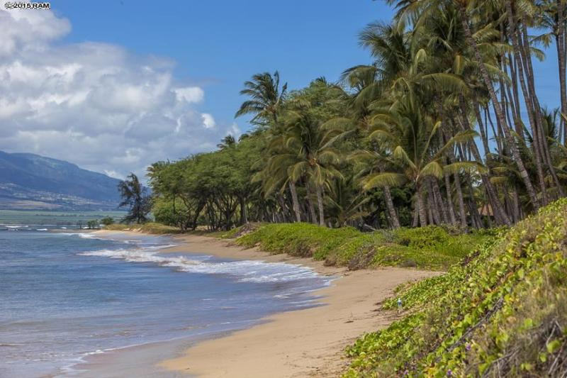 Het strand, slechts een steenworp afstand, is helemaal van jou...