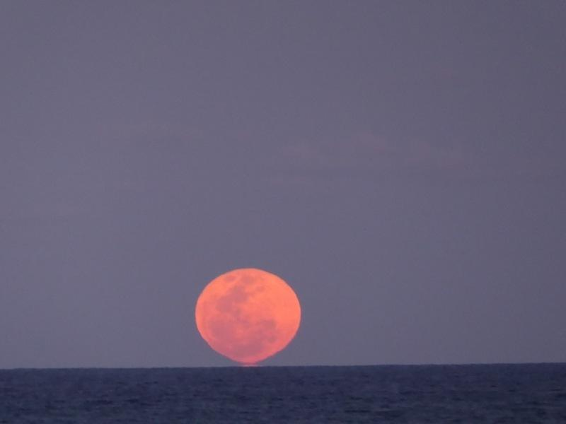 Blood Moon rising on 28th September 2015 on Tallow beach. Glad I witnessed it !
