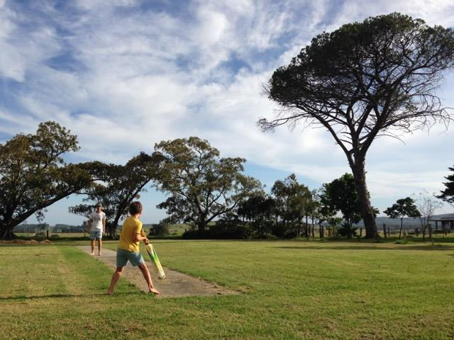 Backyard cricket