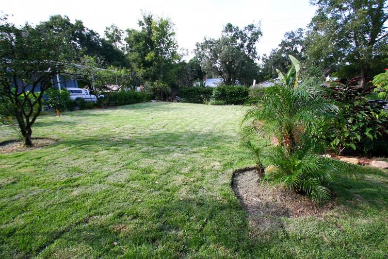 Lawn, several types of tropical fruit trees.