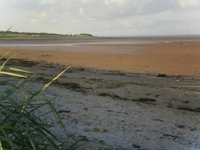 Southerness cottage rental - Beach low tide