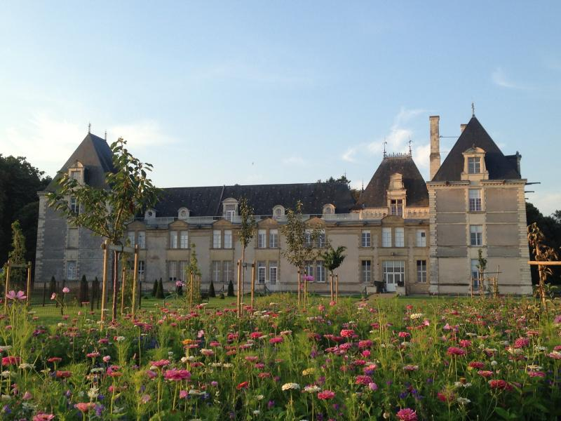 This view shows the rear of the chateau through the wild flower meadow and our 'old variety' orchard