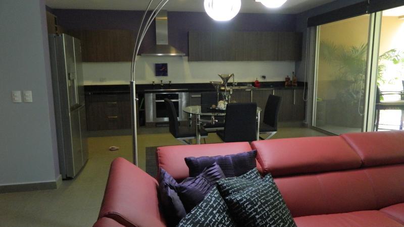 Shared Kitchen/Living Room