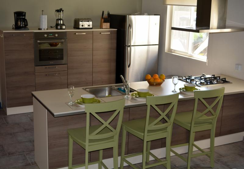 New European Kitchen with Stainless Appliances and Breakfast Bar!