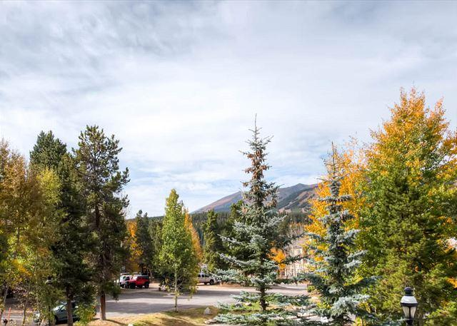 Corral View Breckenridge Lodging Vacation Rentals