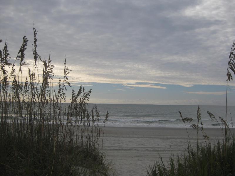 Beach View 2014